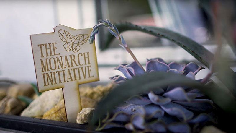 The Monarch Initiative